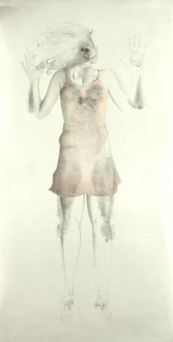"""""""Sans titre"""" 2008 graphite et crayon de couleur  (113x220cm)"""
