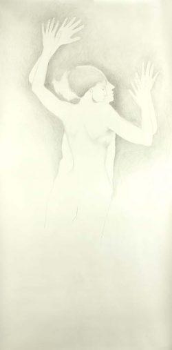 """""""Sans titre"""" 2007 graphite (113 x 220 cm)"""