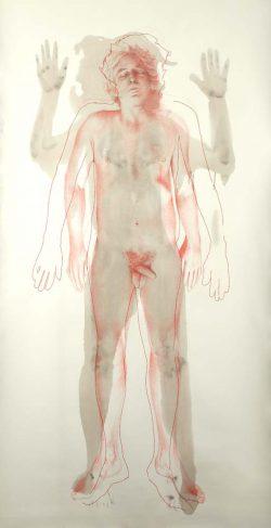 """""""Pierre""""2009, empreinte, graphite et crayon de couleur (113 x 220 cm)"""